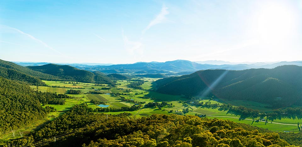 KING VALLEY ITINERARY: PROSECCO ROAD